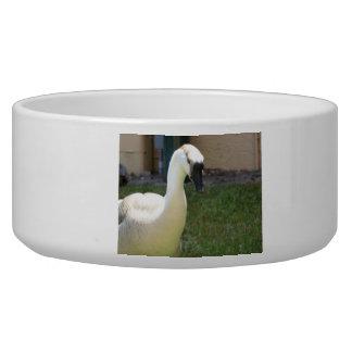 Goose Pet Bowl