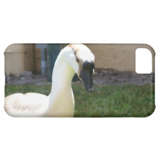 Goose Phone Cover Case For iPhone 5C