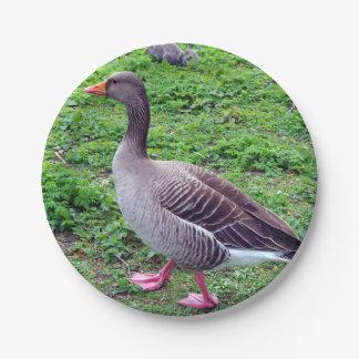 goose plate