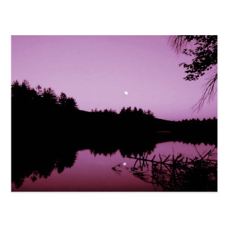 Goose Pond in the evening Postcard