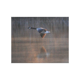 Goose Reflection Canvas Print