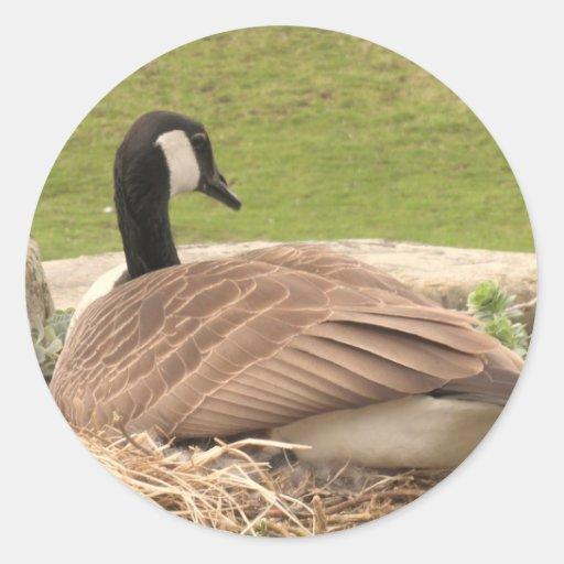 Goose Round Sticker