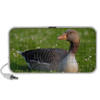 Goose iPhone Speaker