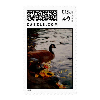 Goose Stamps