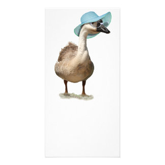 Goose with a Floppy Blue Summer Hat Card