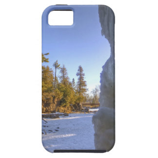 Gooseberry Frozen Frame iPhone 5 Cover