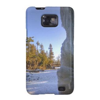 Gooseberry Frozen Frame Galaxy S2 Cover