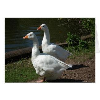 Goosey Goosey Gander Card