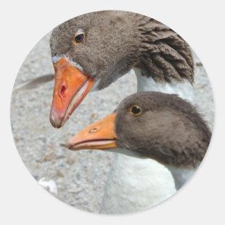 Goosey Goosey Sticker