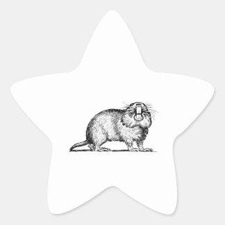 Gopher Pegatina En Forma De Estrella