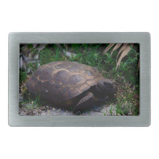 Gopher Tortoise Belt Buckle