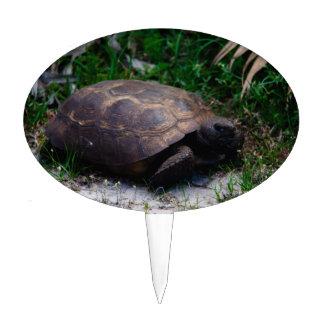 Gopher Tortoise Cake Picks