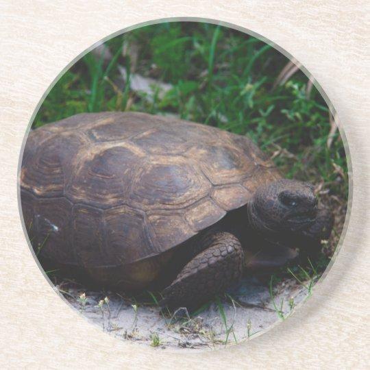 Gopher Tortoise Coaster