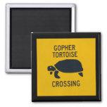 Gopher Tortoise Crossing Fridge Magnets
