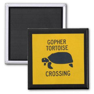 Gopher Tortoise Crossing Magnet