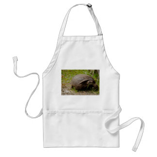Gopher Tortoise Eats Lunch Apron