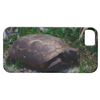 Gopher Tortoise iPhone SE/5/5s Case