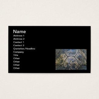 Gopher Tortoise Shell Business Card