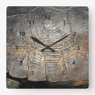 Gopher Tortoise Shell Design Square Wall Clock