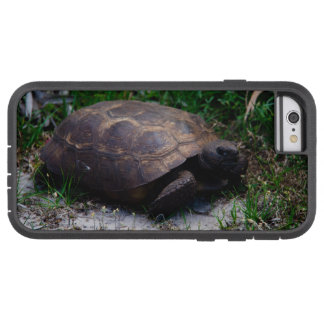Gopher Tortoise Tough Xtreme iPhone 6 Case