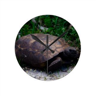 Gopher Tortoise Wall Clocks