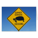 gophercrossing cards