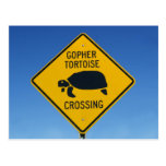 gophercrossing postcard