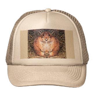 Gordo The Happy Gopher Trucker Cap Trucker Hat