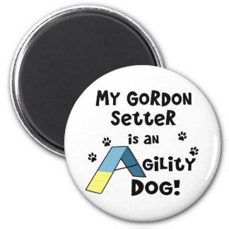 Gordon Setter Agility Dog Magnet