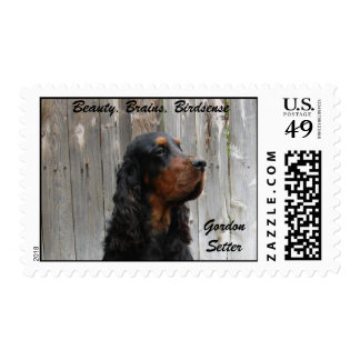 Gordon Setter, Beauty, Brains, Birdsense Postage