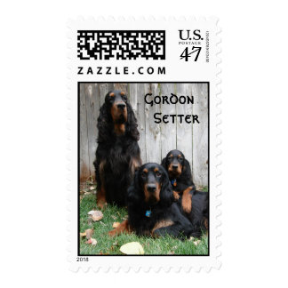 Gordon Setter Generations Custom Postage