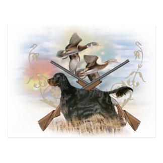 Gordon Setter Hunts Postcard