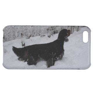 Gordon Setter in a Snowstorm iPhone Case iPhone 5C Covers