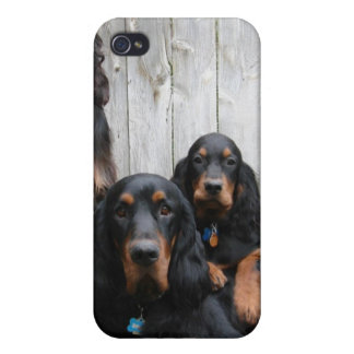 Gordon Setter Pals on an iPhone Case iPhone 4 Cases