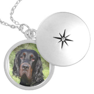 gordon setter.png silver plated necklace