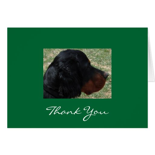 Gordon Setter Puppy Thank You Note Greeting Card
