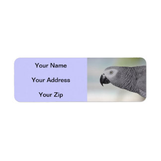 Gorgeous African Grey Parrot Label