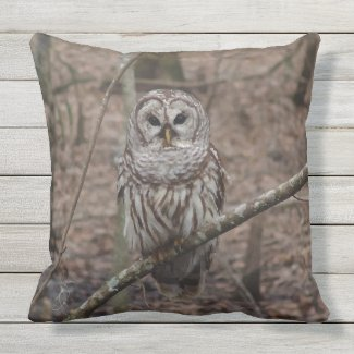 Barred Owl in Forest Print Throw Pillow