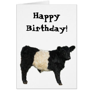 Gorgeous Belted Galloway Steer Cutout Card