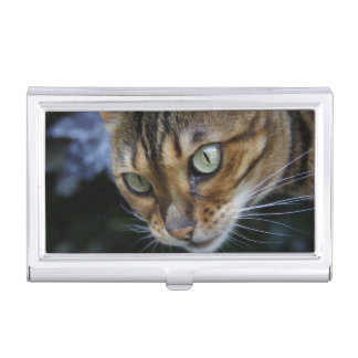 Gorgeous Bengal Cat Business Card Holder