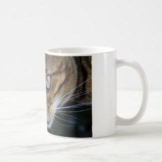 Gorgeous Bengal Cat Coffee Mug