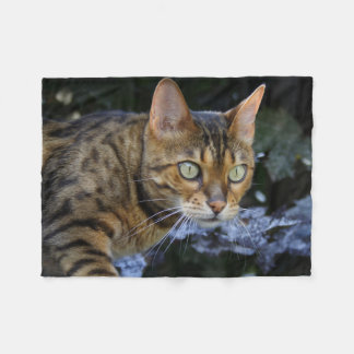 Gorgeous Bengal Cat Fleece Blanket