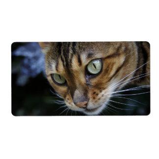 Gorgeous Bengal Cat Label