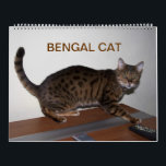 """Gorgeous Bengal Cats 2018 Calendar<br><div class=""""desc"""">13 gorgeous photos of a wonderful sweet kitty,  loved by many owners and breeders</div>"""