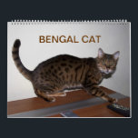 "Gorgeous Bengal Cats 2019 Calendar<br><div class=""desc"">13 gorgeous photos of a wonderful sweet kitty,  loved by many owners and breeders</div>"