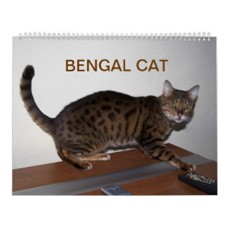Gorgeous Bengal Cats 2019 Calendar