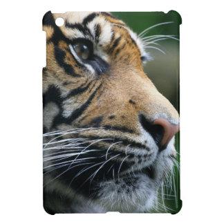 Gorgeous Bengal Tiger Face iPad Mini Cover