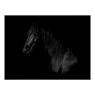 Gorgeous black Friesian Horse Poster