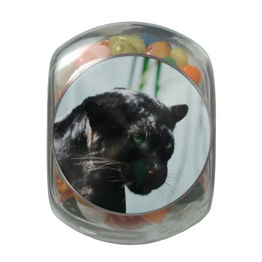 Gorgeous Black Panther Jelly Belly Candy Jar