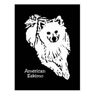 Gorgeous black/white American Eskimo postcard
